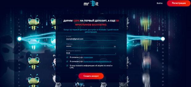 поля регистрации mr Bit