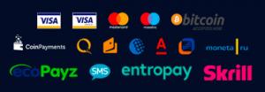 Платежные системы mr bit